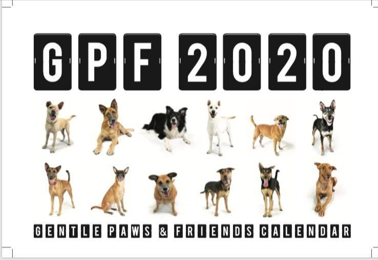 """Gentle Paws & Friends""– Gentle Paws Dog Shelter 2020 Calendar"