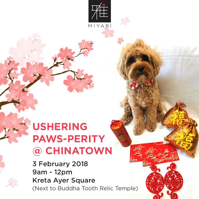 Ushering Paws-perity at Chinatown