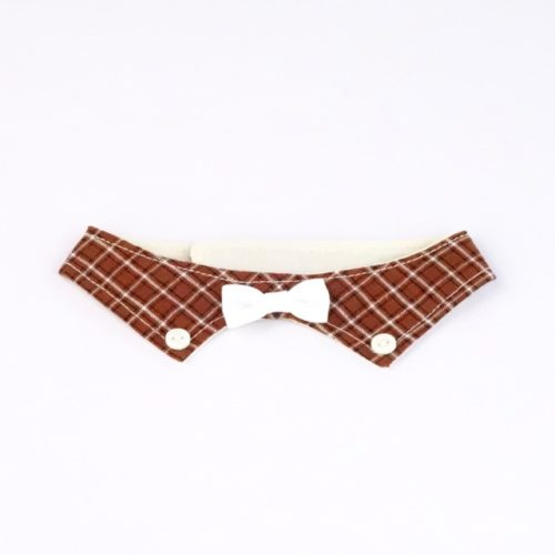 Suit Up Decorative Collar