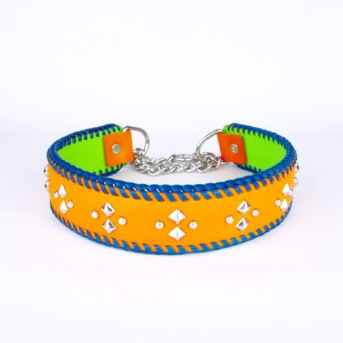 The Colour Wheel – Half-chain collar for big dogs
