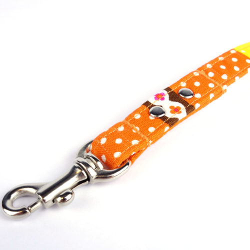 Beach Holiday – Leash for dogs