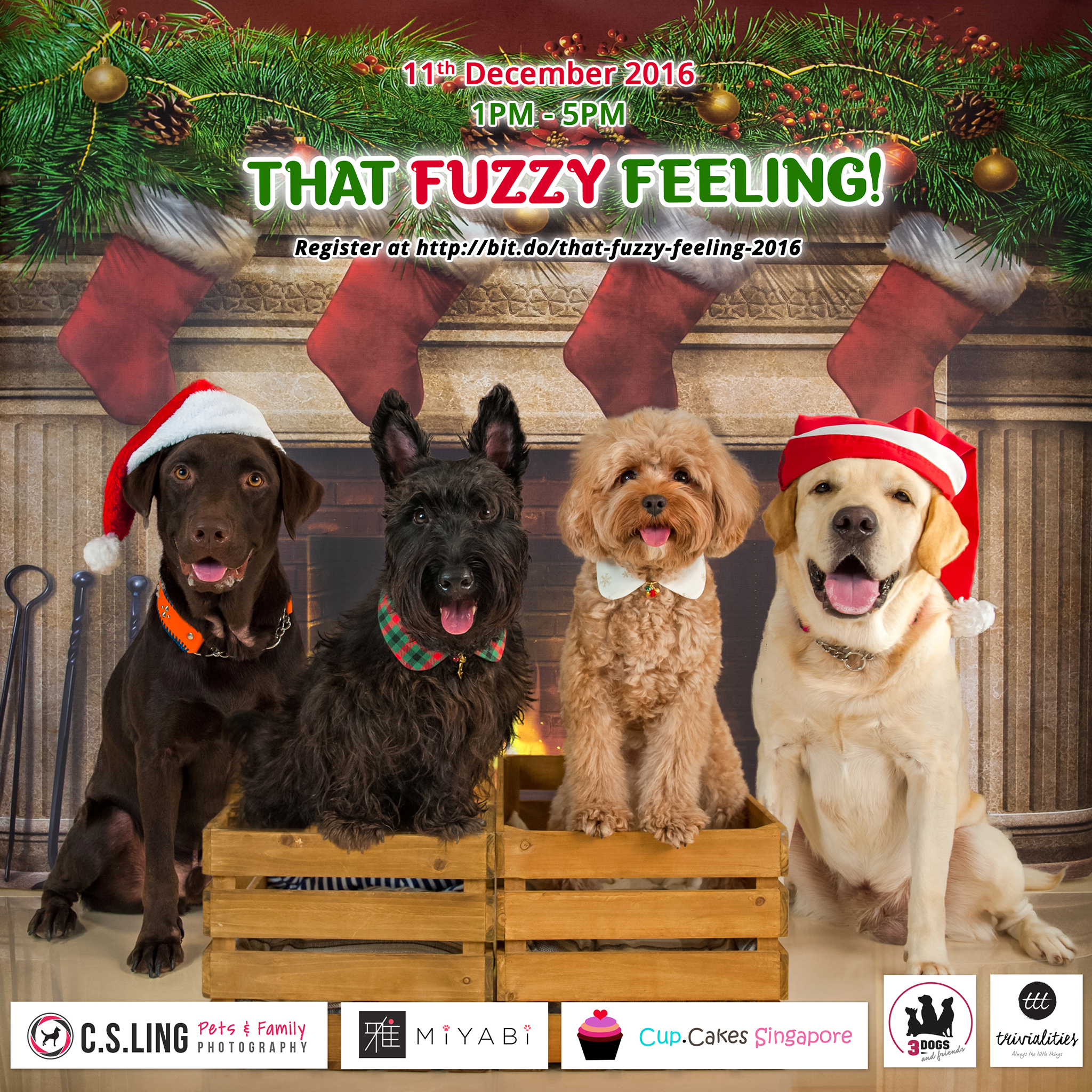 Join us for That Fuzzy Feeling II: A Dog-friendly Tea Paw-ty