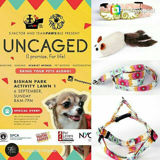UNCAGED Carnival | S-Factor & Team Pawsible